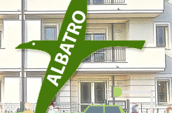 albatro logo copia copia